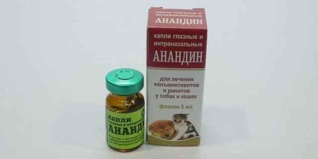 Советы, как правильно применять капли в уши и уколы анандин кошке