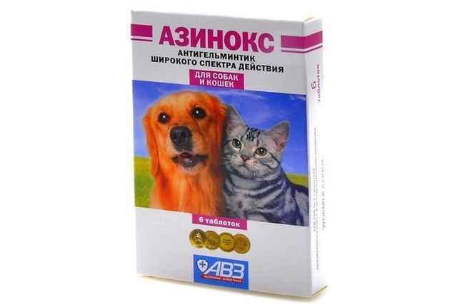 Как правильно давать препарат Азинокс кошке: дозировка и инструкция