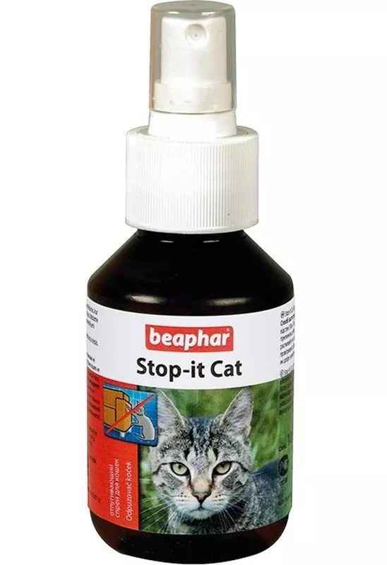 Можно ли сделать кошачий Антигадин самостоятельно: какой лучше выбрать