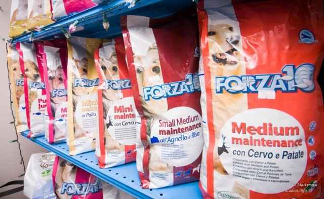 Подробный обзор кормов фирмы forza 10 для собаки с описанием состава