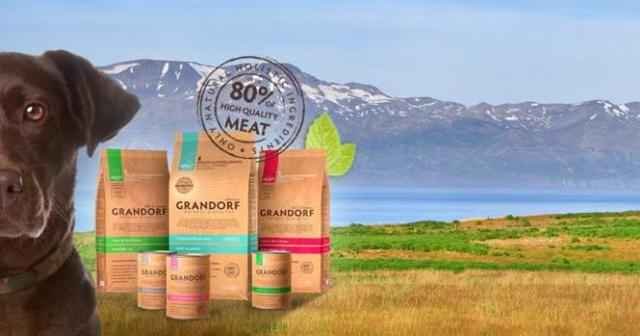 Обзор сухих кормов и влажных консервов фирмы Грандорф для взрослых собак и щенков