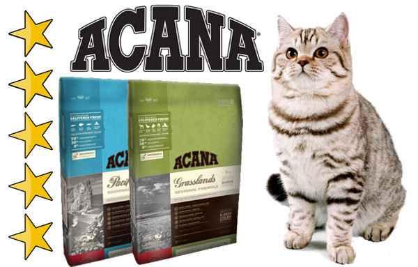 Разновидности кормов Акана для кошек: описание состава и дозировки