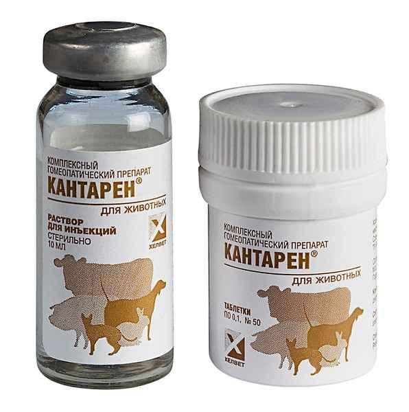 Как правильно использовать уколы, капли и таблетки кантарен для кошки