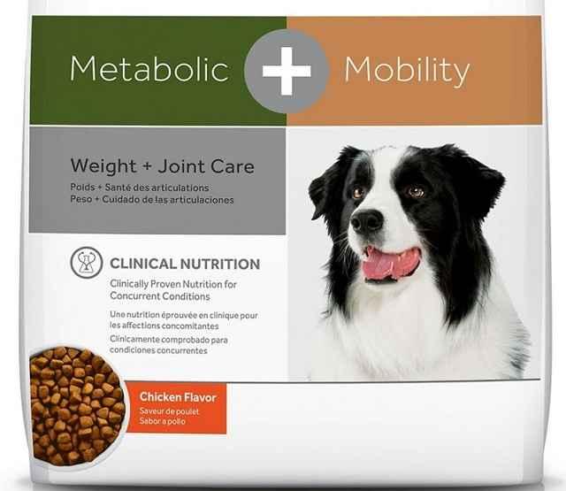 Как посадить собаку на диету для похудения: специальные корма от ожирения
