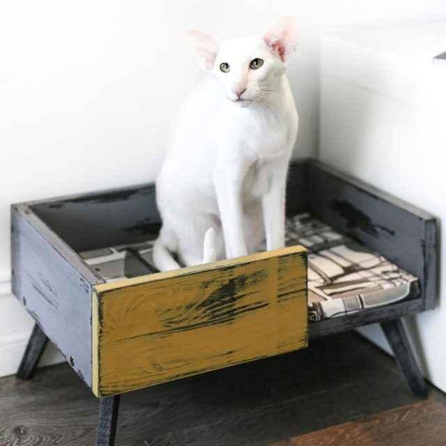 Варианты лежанок для кошек: из свитера, на батарею, на подоконник и другие примеры