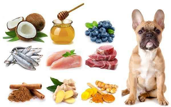 Особенности кормления собаки натуральным питанием: примерный рацион