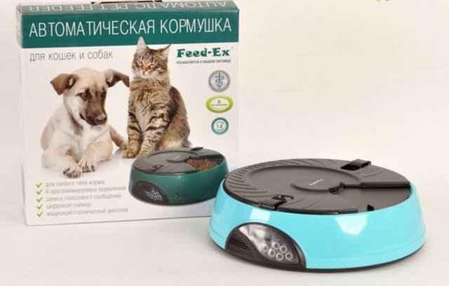 Какие бывают автокормушки с таймером для собак и щенков: обзор моделей