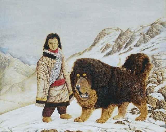 Как выглядит тибетский мастиф и человек: описание внешности и поведения породы