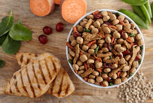 Почему собаки не едят сухие корма: что можно сделать хозяину в такой ситуации